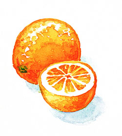Dispelling the Urban Myth of the Orange on the Seder Plate