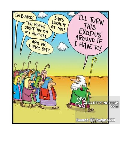 Images Of Passover Cartoon Pictures