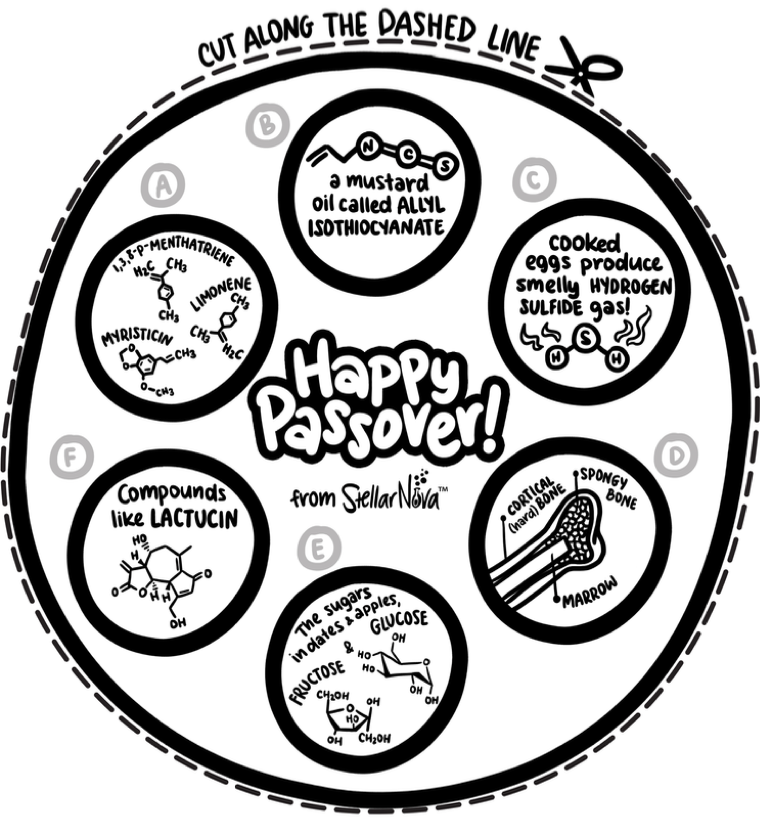 This is a picture of Challenger Printable Seder Plate