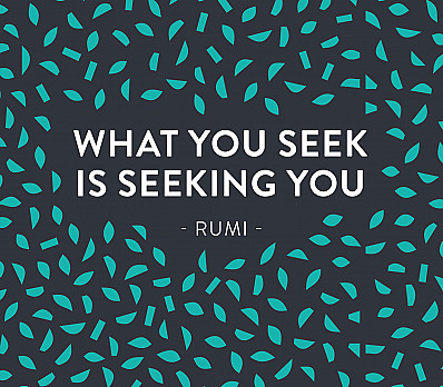 What You Seek…